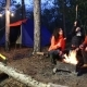 Camping and Tent Under the Pine Forest - VideoHive Item for Sale