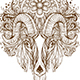 Hand Drawn Ornamental Goat Head - GraphicRiver Item for Sale