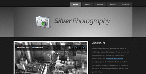 Silver Photography | Photo Template