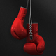 Boxing Gloves Hanging - VideoHive Item for Sale
