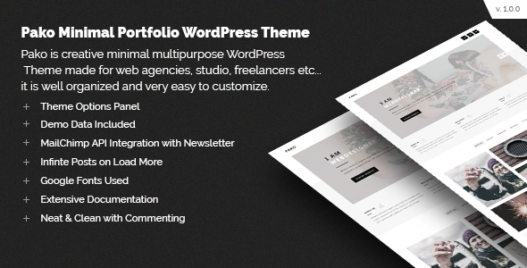 Pako Minimal Portfolio WordPress Theme