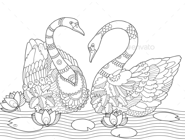 swan coloring page - swan coloring book for adults vector by alexanderpokusay