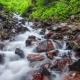 Stream Water and Rocks, Mountain Stream - VideoHive Item for Sale