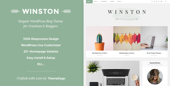 Responsive WordPress Blog Theme – Winston