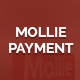 Mollie payment gateway magento 2 - CodeCanyon Item for Sale