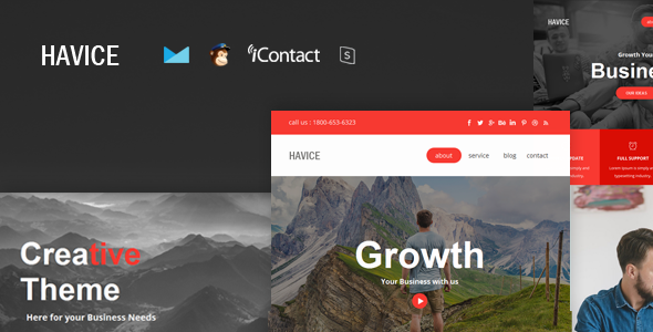 Havice Mail – Responsive E-mail Template + Online Access