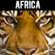 Positive Africa - AudioJungle Item for Sale