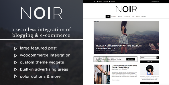 Noir - Blog & Shop WordPress Theme