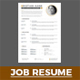 Job Resume - GraphicRiver Item for Sale