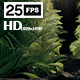 The Palms - VideoHive Item for Sale