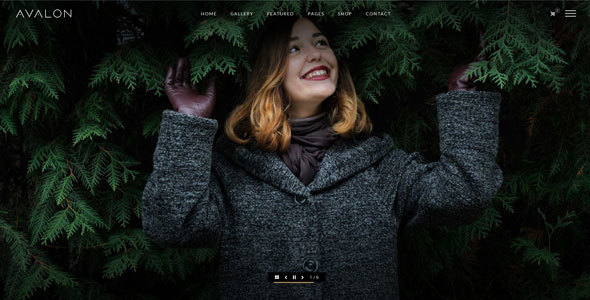 Avalon – Photography and Portfolio WordPress Theme for Photographers