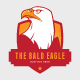 Multi purpose Eagle Logo - GraphicRiver Item for Sale