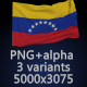 Flag of Venezuela - 3 Variants - GraphicRiver Item for Sale