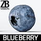 Blueberry 001 - 3DOcean Item for Sale