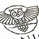 Owl Night Logo Template