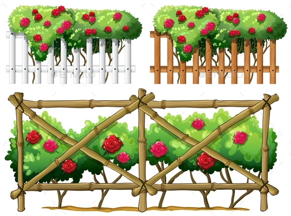 Fence Design with Roses - Flowers & Plants Nature