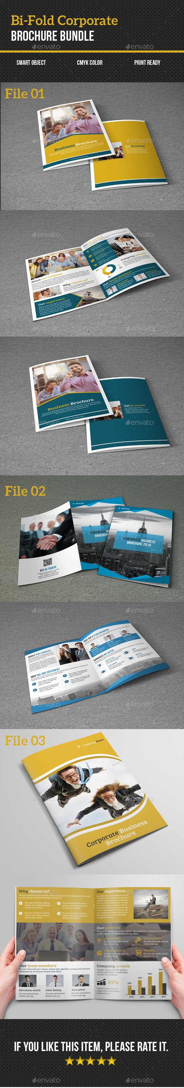 Bi-Fold Corporate Brochure Bundle - Corporate Brochures