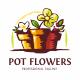 Pot Flowers