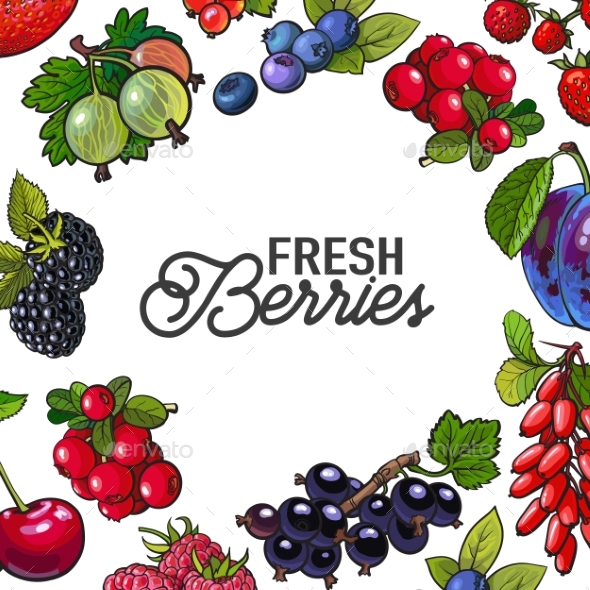 Frame of Garden Berries with Round Place for Text - Flowers & Plants Nature