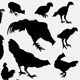 Rooster Collection Silhouette - GraphicRiver Item for Sale