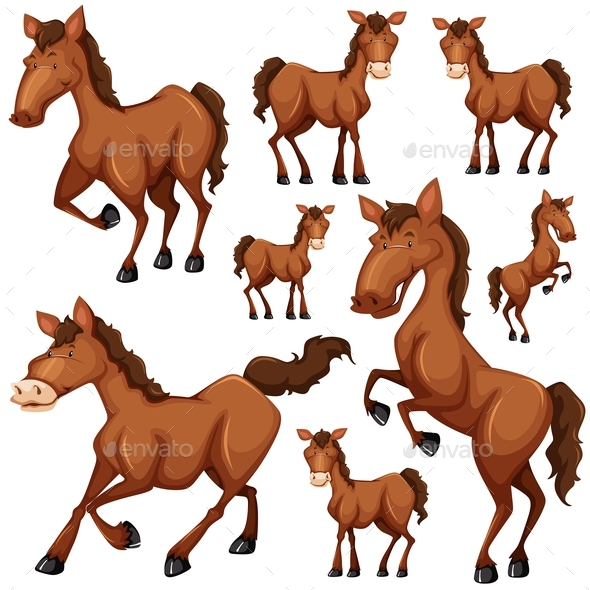 Set of Brown Horse in Many Positions - Animals Characters