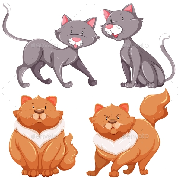 Set of Cats Thin and Fat - Animals Characters