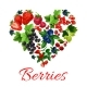 I Love Berries Heart Shape Emblem