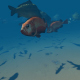 Submarine fish - VideoHive Item for Sale