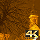 Snowy Night Tree and Church - VideoHive Item for Sale