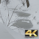Frozen Winter Water Stream - VideoHive Item for Sale