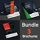 A4 Business Brochure Bundle - GraphicRiver Item for Sale