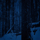 Passing Tree In Snowfall At Night - VideoHive Item for Sale