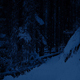 Snowy Path In The Woods At Night - VideoHive Item for Sale