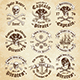 Vector Pirate Logo Templates - GraphicRiver Item for Sale