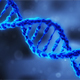 DNA Molecules Science - VideoHive Item for Sale