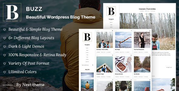Buzz – Responsive WordPress Blog Theme