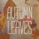 Autumn Leaves Pack - VideoHive Item for Sale