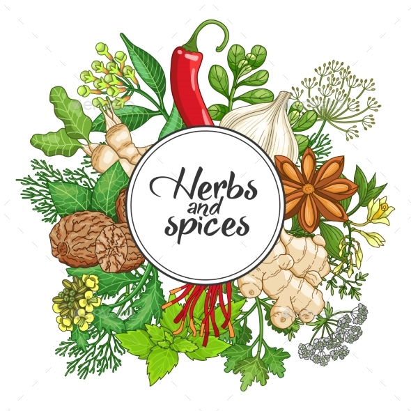 Vector Hot Round Design with Spices and Herbs - Flowers & Plants Nature