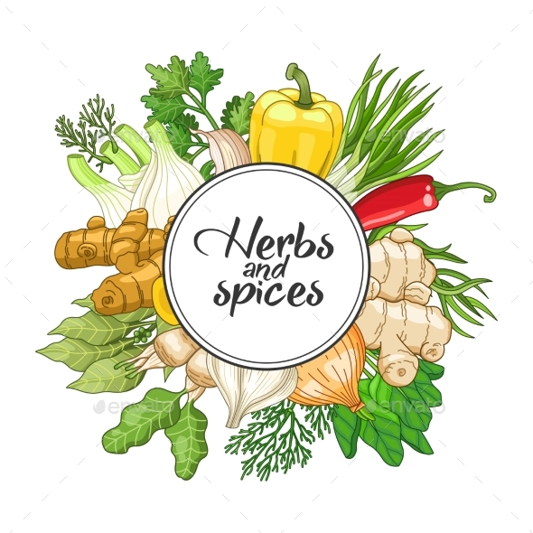 Vector Vegetable Round Design with Spices - Flowers & Plants Nature