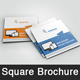 Web Design Square  Brochure Templates