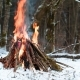 Big Campfire in the Winter Forest - VideoHive Item for Sale