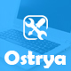 Ostrya - Computer and Mobile Phone Repair Service WordPress Theme