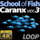 School of Fish Caranx-3 - VideoHive Item for Sale