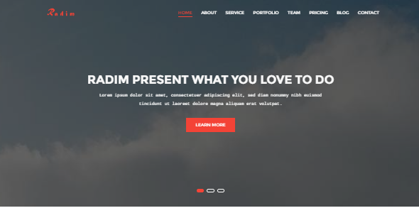 Radim – One Page Business Template