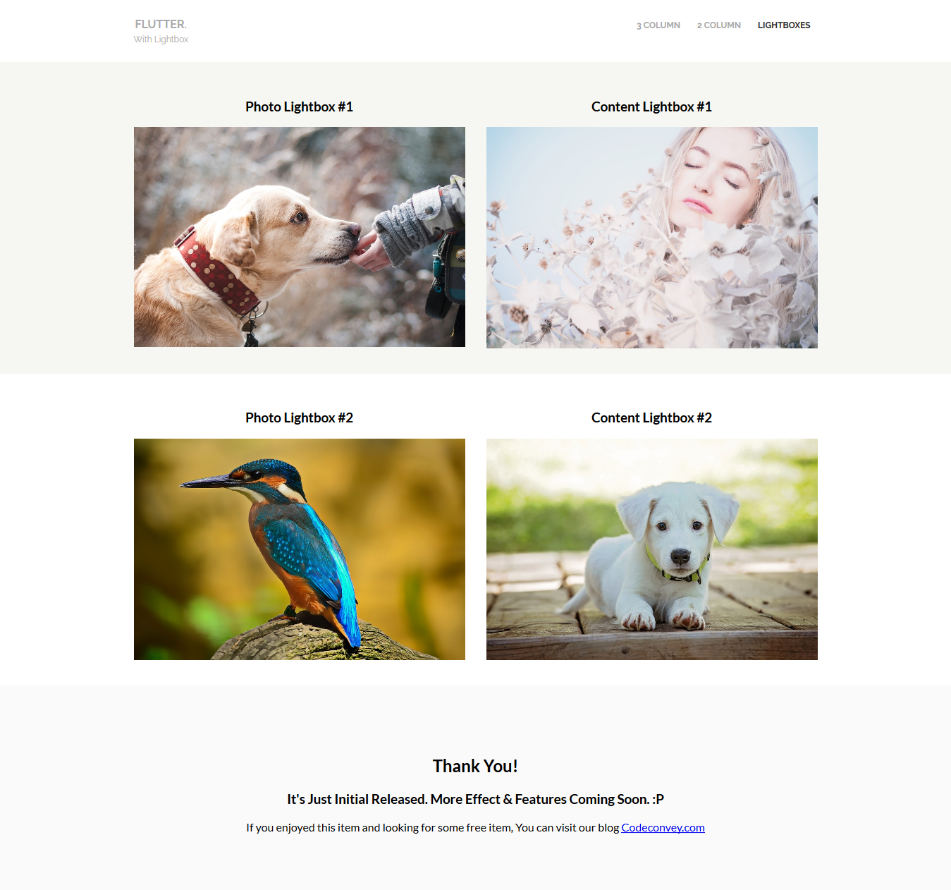 Flutter CSS Image Hover Effects Lightbox(1).png Flutter CSS Image Hover Effects Lightbox(2).png ...