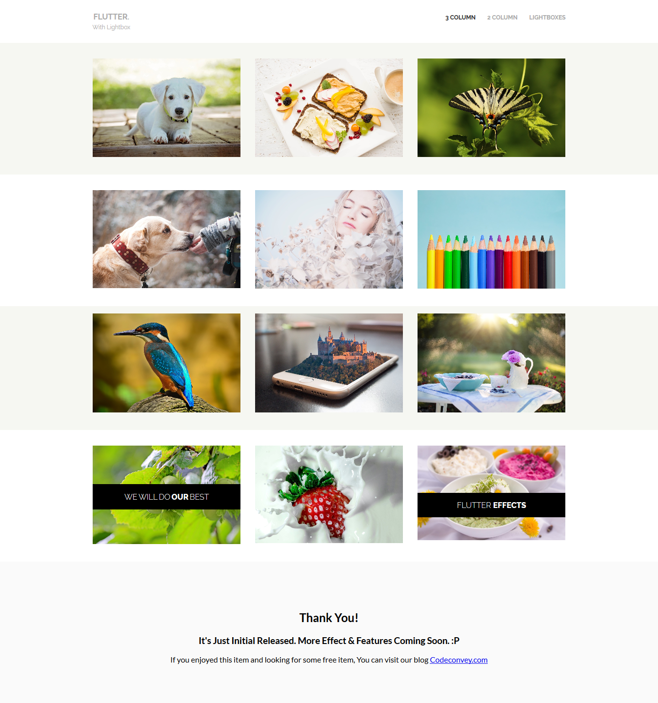 ... CSS Image Hover Effects Lightbox.png ...