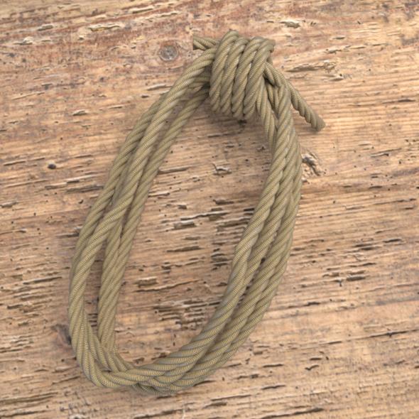 Coiled Rope By Gregwalker 3docean
