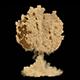 Desert Explosion - VideoHive Item for Sale