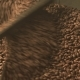 Coffee Bean Mixing Device at Work - VideoHive Item for Sale