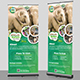 Wildlife Safari Roll-Up Banner Template